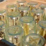 Пчеловод заработал состояние на мёде