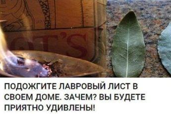 Вот зачем все поджигают дома лавровый лист. Я уже тоже так буду!