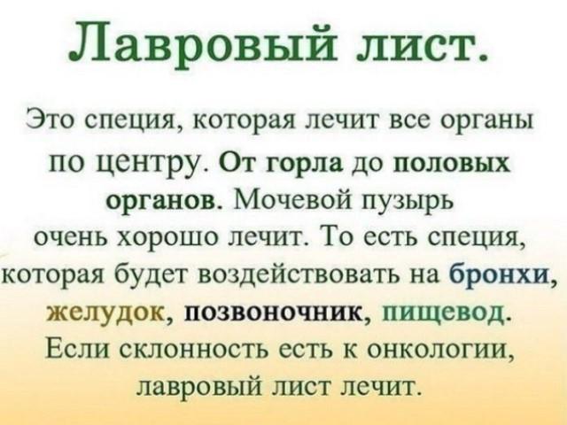 ЛАВРОВЫЙ ЛИСТ В ПОМОЩЬ.