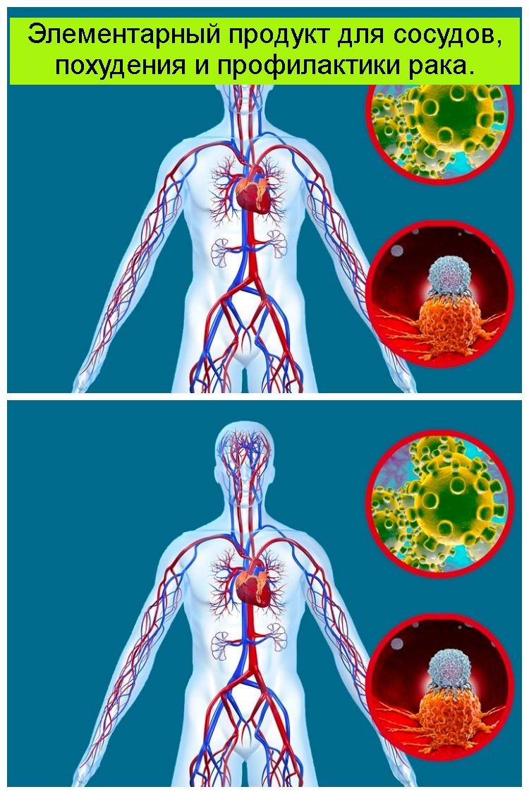 Элементарный продукт для сосудов, похудения и профилактики рака 4