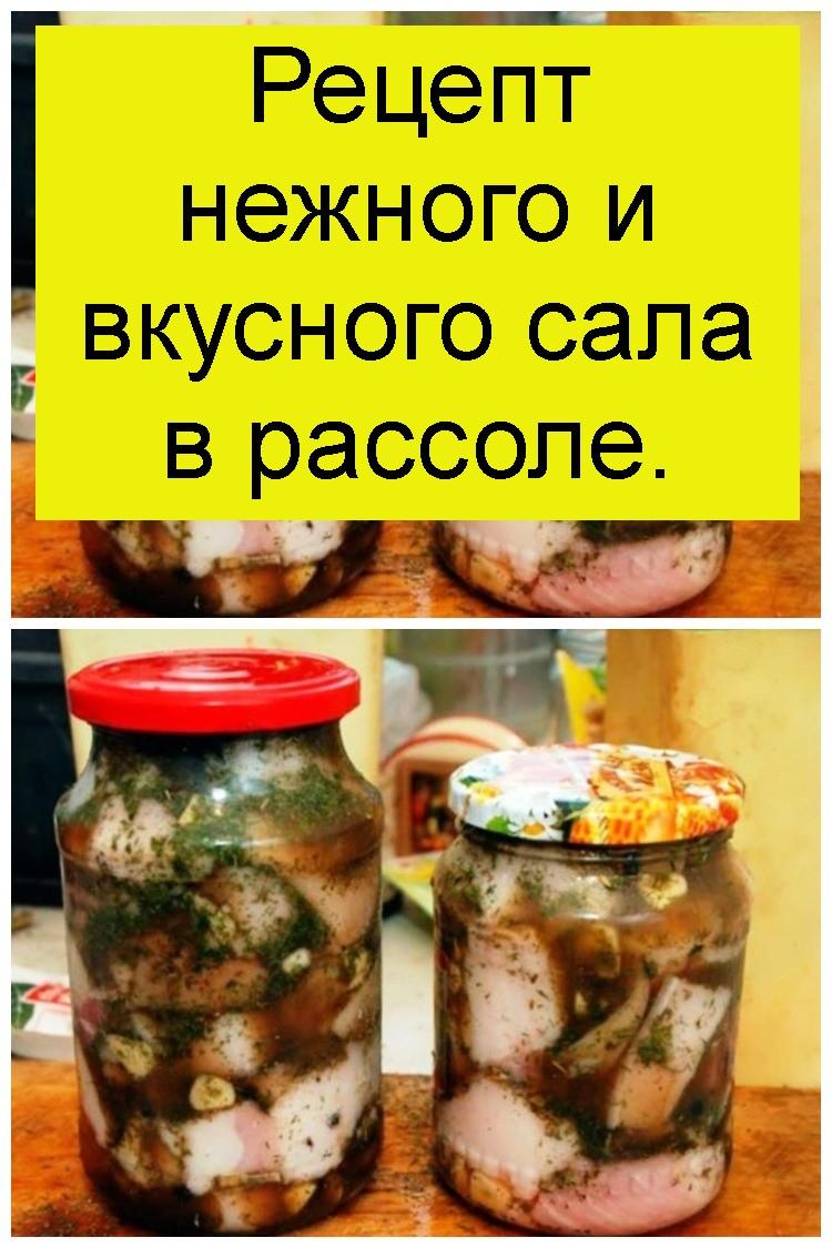 Рецепт нежного и вкусного сала в рассоле 4