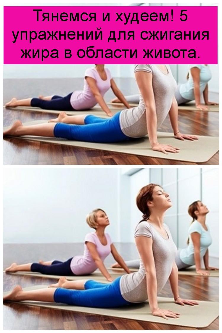 Тянемся и худеем! 5 упражнений для сжигания жира в области живота 4