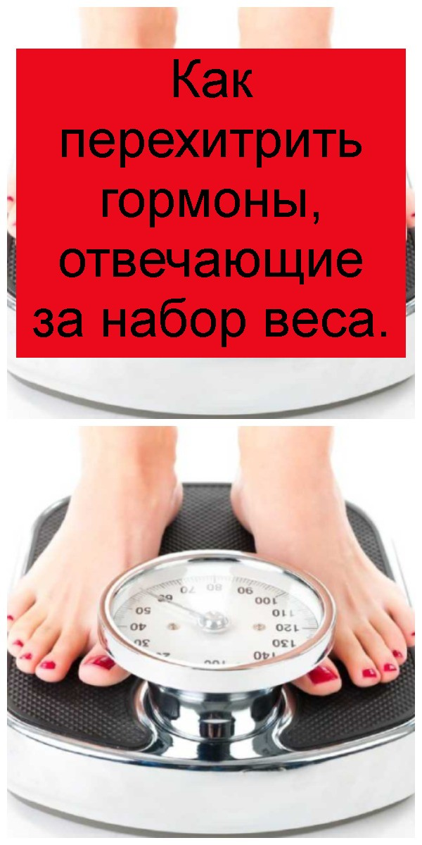 Как перехитрить гормоны, отвечающие за набор веса 4